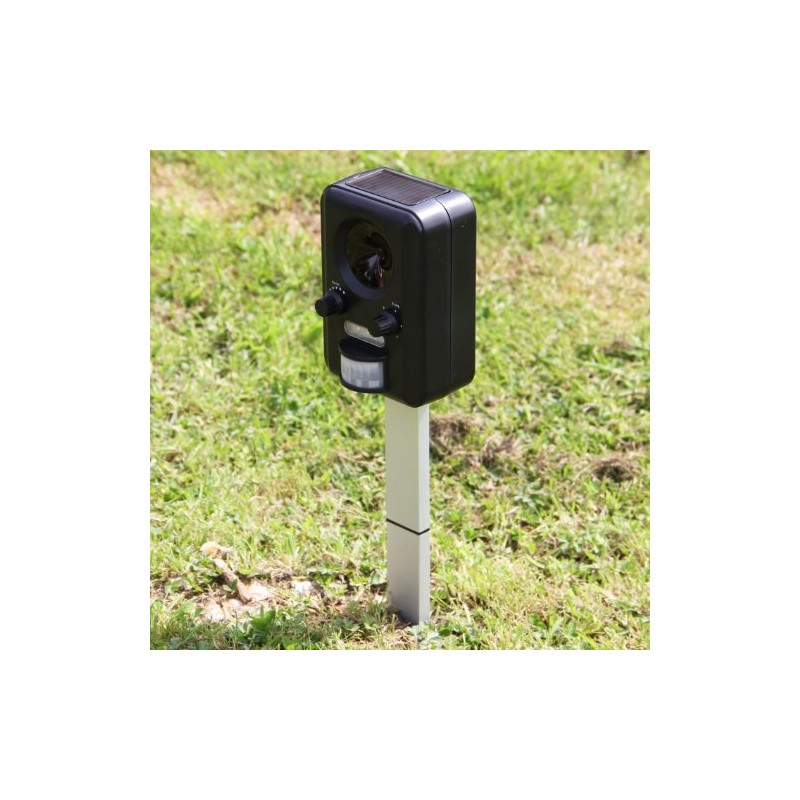 Frostfire batterie solaire appareil r pulsif ultrason pour - Appareil pour agrandir chaussure ...